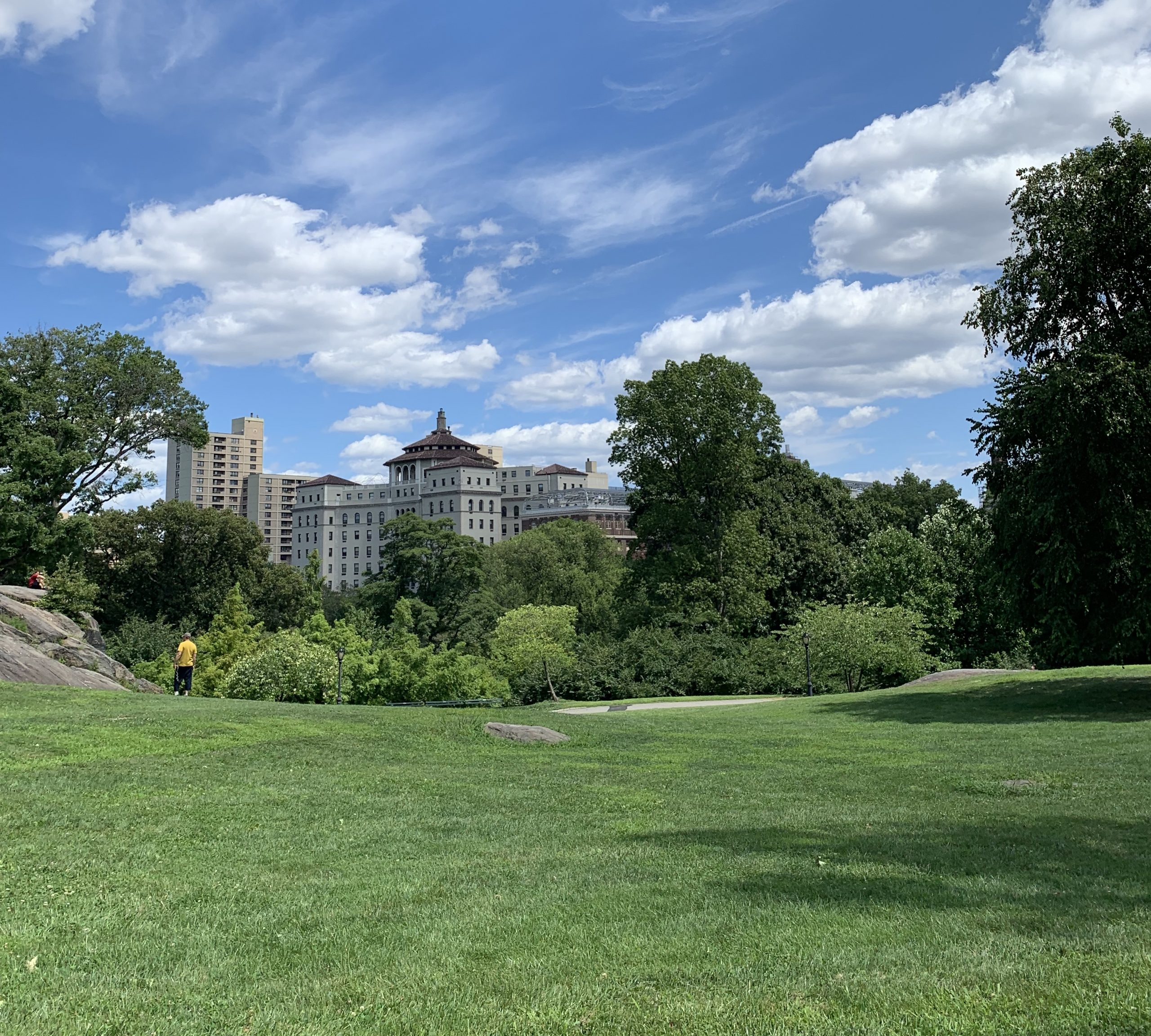 Sky, grass and skyline for article 5 Must-See Places In Central Park